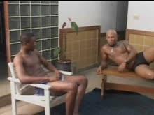 Gata brasileira no porno com negoes